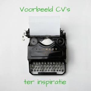 plaatje voorbeeld CV's